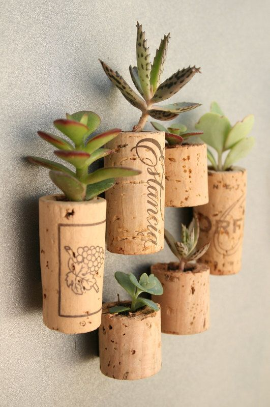 Tappi-sughero-idee-riciclo-utile-e-creativo-porta-piante-grasse